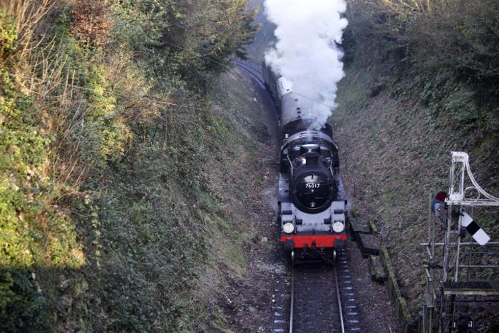 A steam train driving through a luscious green countryside - train photography