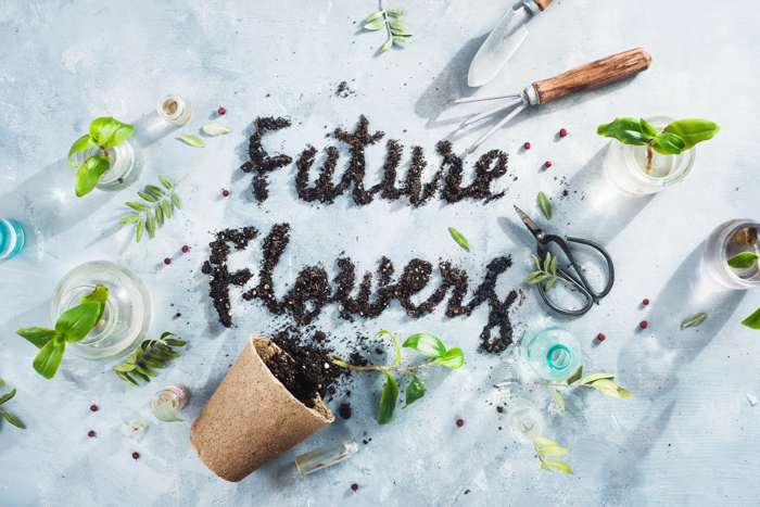 A creative still life shot with a flower theme - examples of typography