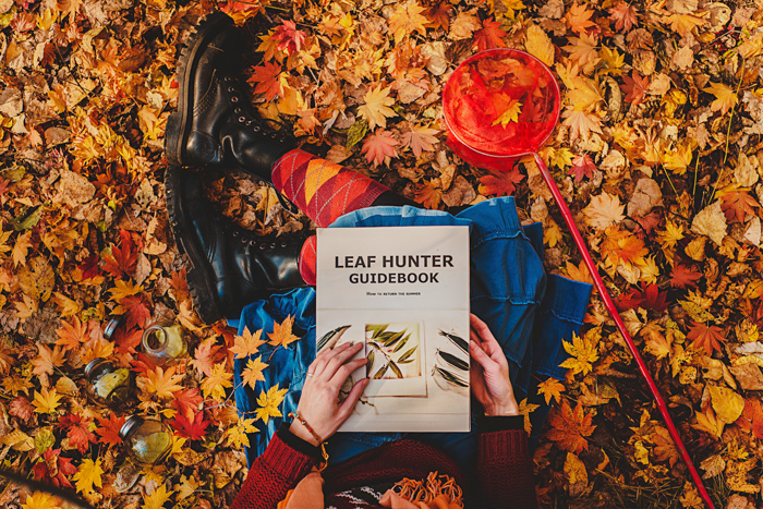 An overhead close up of a person sitting on a carpet of autumn leaves, reading a book called 'Leaf hunter guidebook' - examples of using text in photography