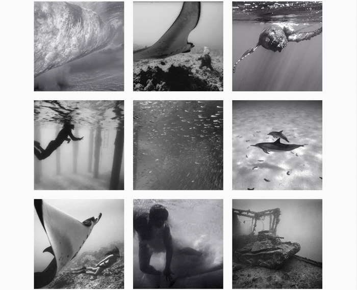 A nine photo grid by Wayne Levin - contemporary analog photography