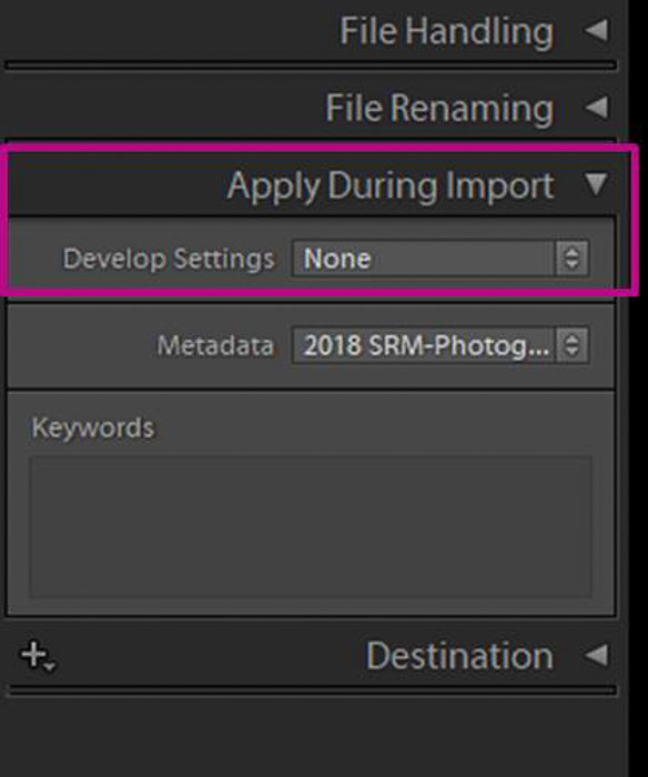A screenshot showing how to apply develop settings during import in lightroom
