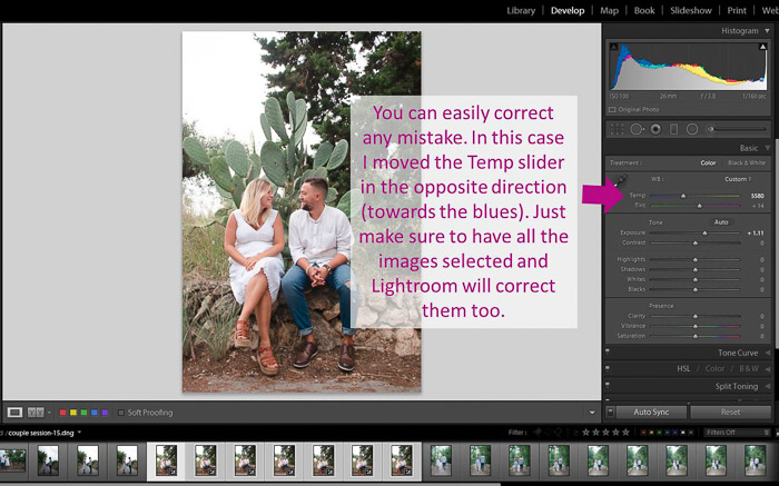 A screenshot showing how to correct autosync mistakes  to batch edit in Lightroom