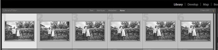 A screenshot showing how to batch edit in lightroom - selected preset