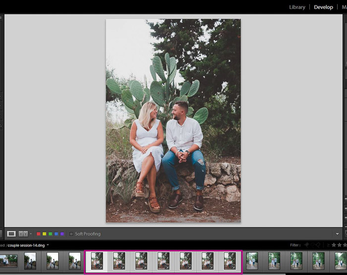 A screenshot showing how to sync results to batch edit in Lightroom
