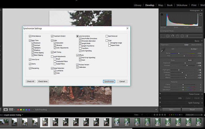 A screenshot showing how to batch edit in lightroom - Synchronisation Option