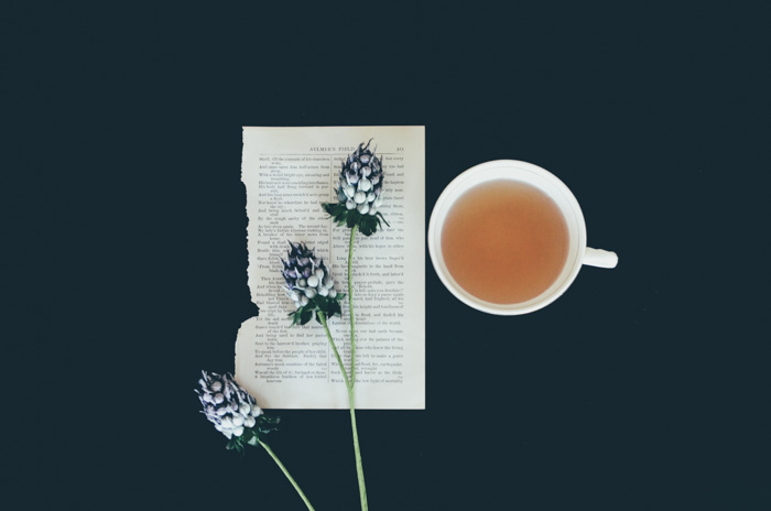 Serene flatlay photo of a teacup, page of a book and three flowers on a dark background - understanding different file types, formats and file extensions