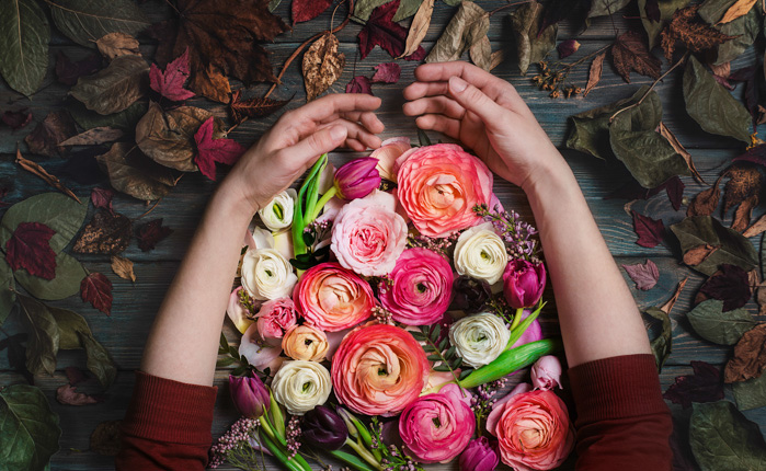 A creative flat lay of hands gathering flower petals against hand painted background