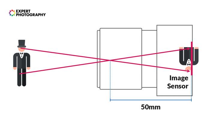 A diagram explaining focal length and how light passes through a camera sensor - camera lenses explained
