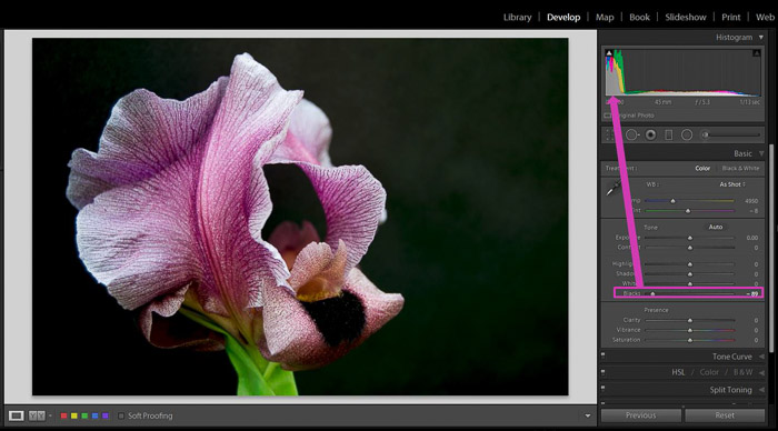 A screenshot showing how to use Lightroom's Shadows and Black Sliders for Better Control