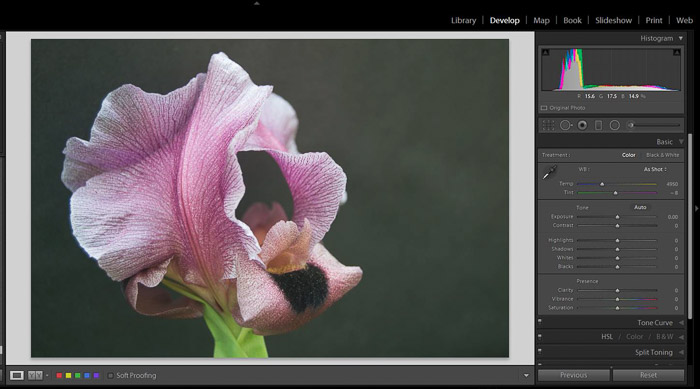 A screenshot of working with shadows and blacks in Lightroom - exposure slider