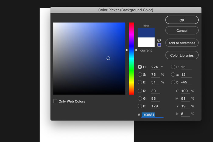 A screenshot showing how to create a Digital background in Photoshop - color picker photoshop