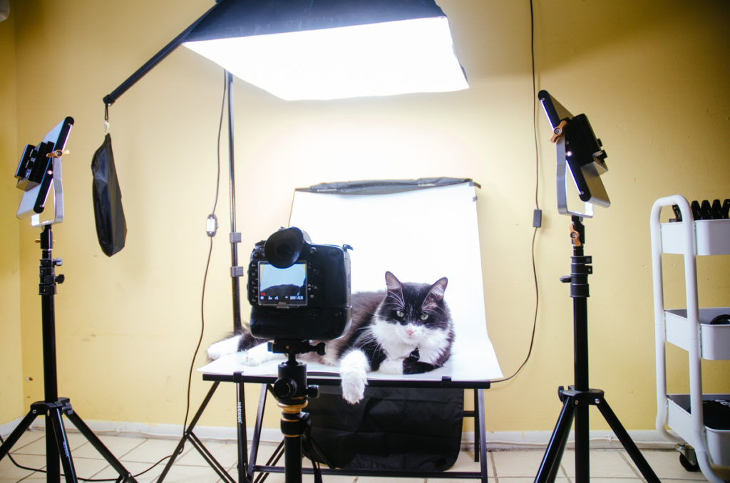 10 Timeless Tips For Making Your Diy Photo Studio