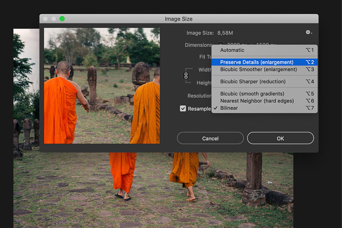 A screenshot showing how to preserve details (enlargement) of image in Photoshop