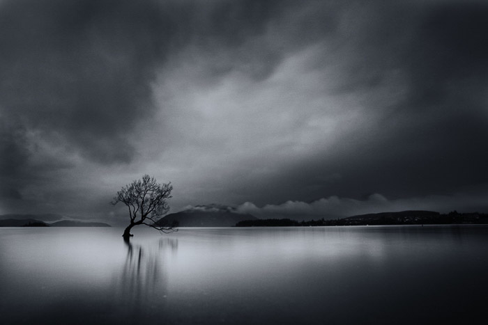 A black and white minimalist landscape photography sot featuring a lone tree in water under a dramatic cloudy sky