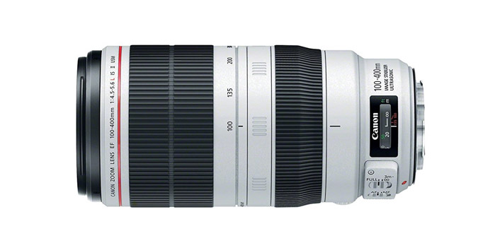 Canon 100-400mm IS II - best telephoto lens for wildlife for photography