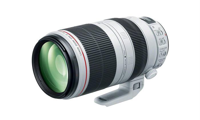 Canon 100-400 mm IS II: los mejores teleobjetivos