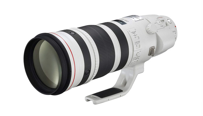 Canon 200-400mm f/4L IS USM Extender 1.4x - best telephoto lenses for wildlife photography