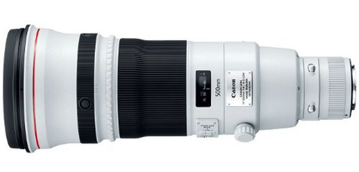 Canon EF 500mm f/4L IS II Lens - best telephoto lenses for wildlife photography