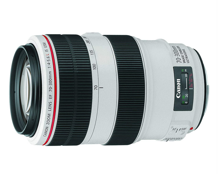 Canon EF 70-300mm f/4.5-f/5.6L telephoto lenses for wildlife