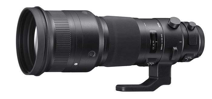 Sigma 500mm f/4 Sport telephoto lenses for wildlife photography