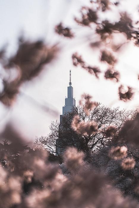 Dreamy shot of a tower through flowers in Shinjuku Gyoen Garden