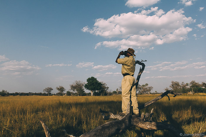 A photographer shooting in a grassy landscape - how to dress for wildlife photography
