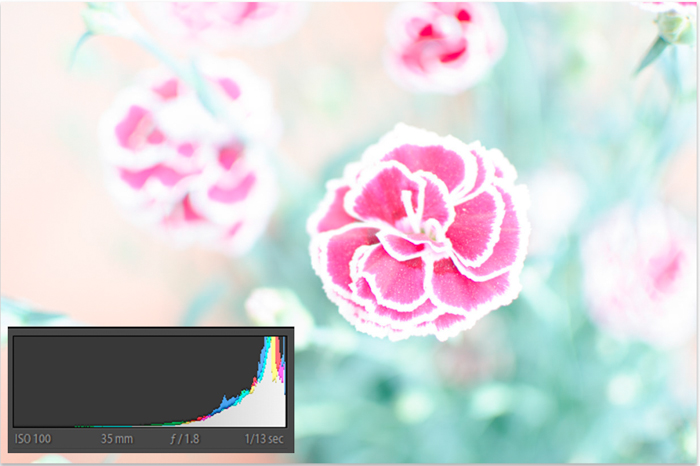 An underexposed flower image with histogram