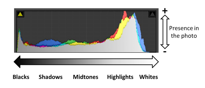 A photo histogram to check the exposure of images
