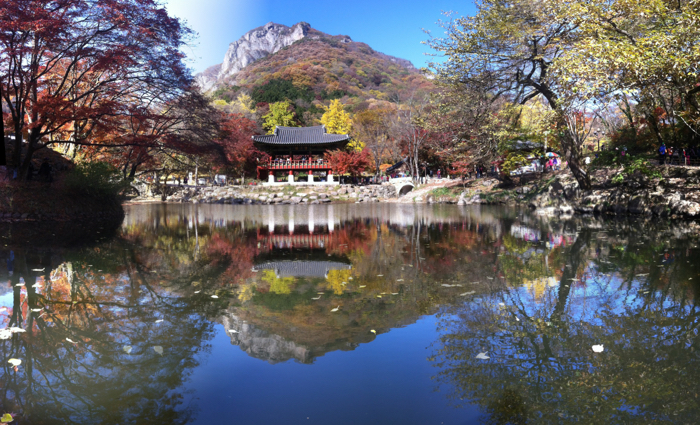 stunning photo of a pond with a temple and mountain in the background