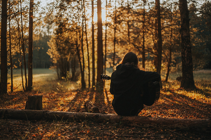 Beautiful autumn photography of a person sitting on a log in a forest sitting indoors
