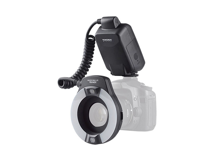 An image of small ring lights overlayed on a DSLR camera