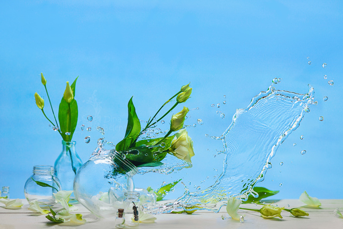 A creative still life of flowers in glass jars falling with a creative water splash - spring photos ideas