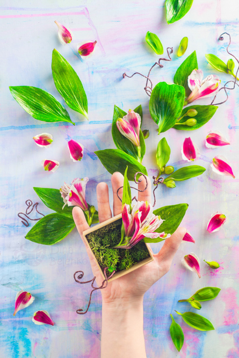 Cute garden themed spring photos featuring a hand holding a pot of flowers - spring photography ideas