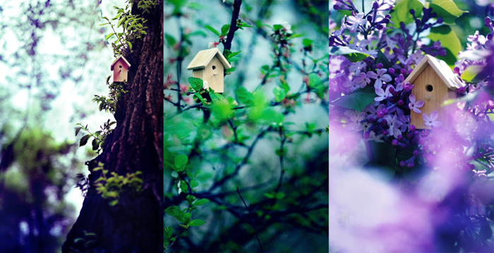 Cute spring photos triptych of a little wooden house in a tree taken from different angles - spring photography ideas