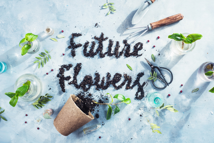 Cool garden themed still life featuring flowers, flower pots and typography - spring photography ideas