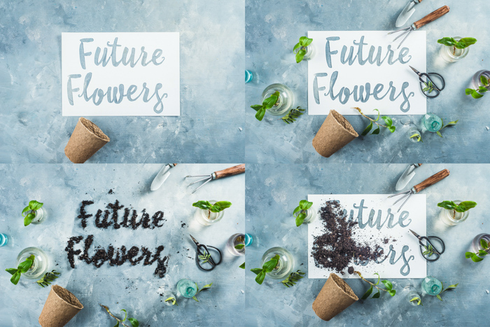 Cool still life photo grid featuring flowers, flower pots and typography - spring photography ideas