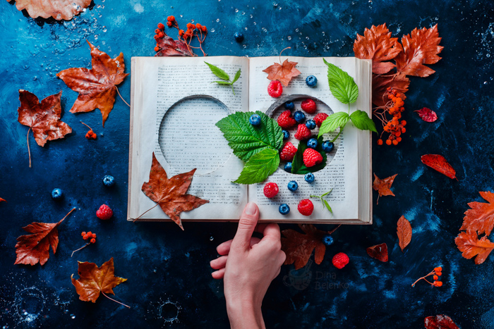 Creative flat lay featuring berries, leaves and a book
