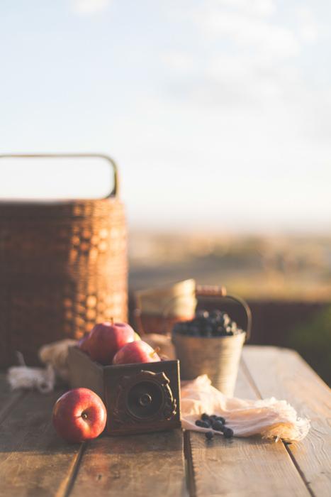 An outdoor picnic still life