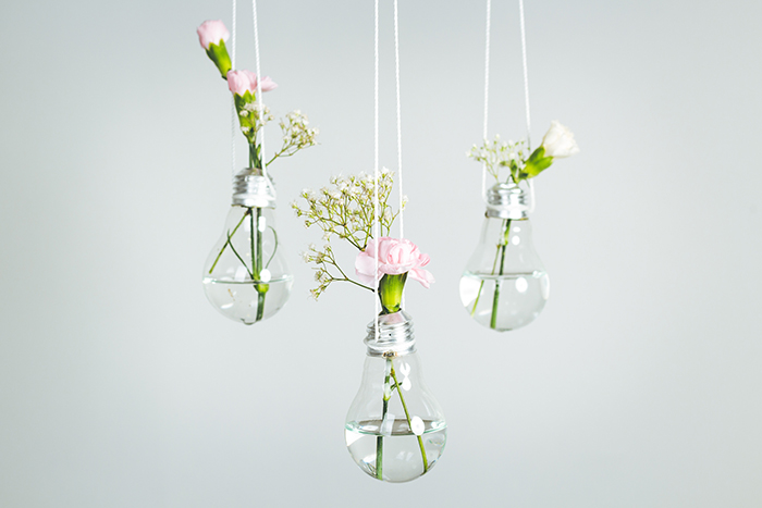 three lightbulbs with water and flowers inside hanging in front of a white background