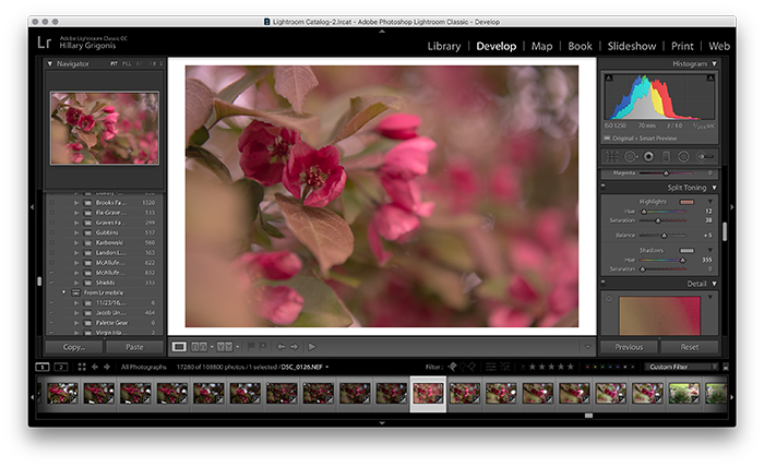 A screenshot showing how to use split toning in Lightroom