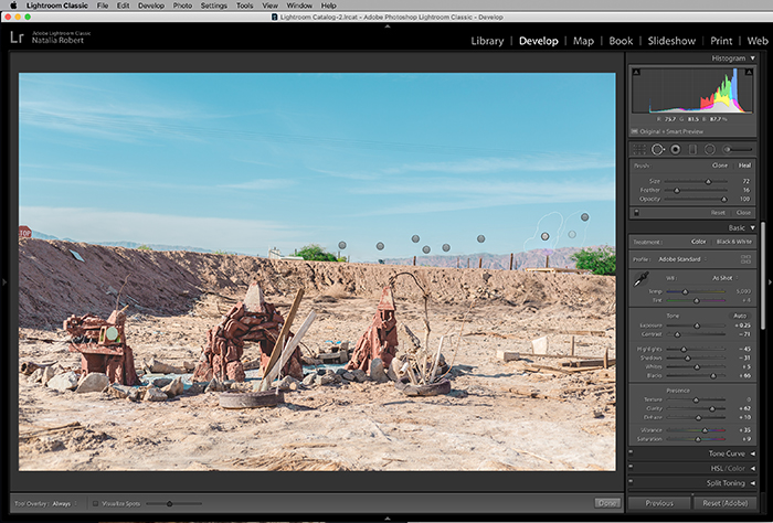 A screenshot showing where to find the spot removal tool in Lightroom