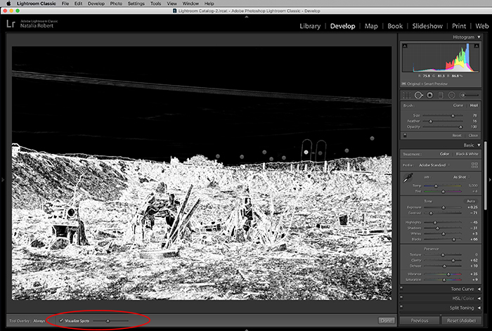 A screenshot showing how to use the spot removal tool in Lightroom