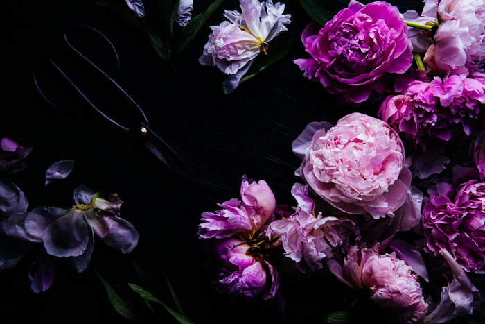 A flat lay photo of pink and purple flowers shot with a smartphone