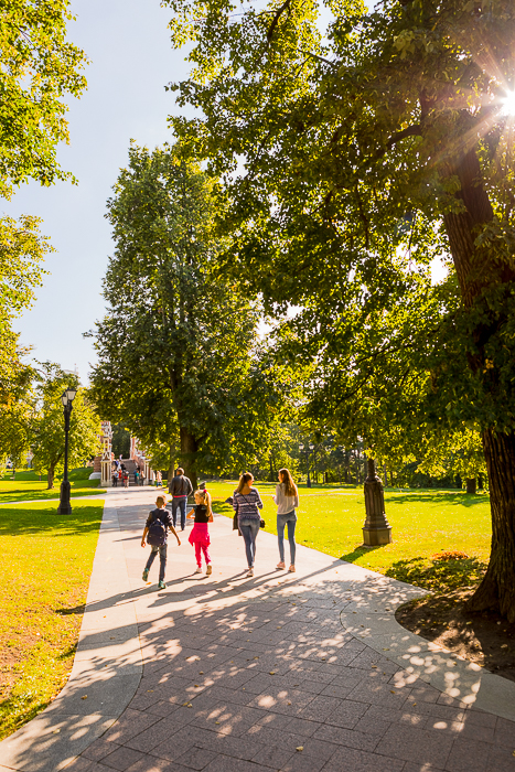 bright and airy photo of people walking through a park with a sunburst effect through the trees