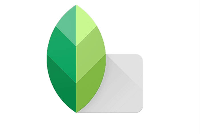 The snapseed icon - instagram filters