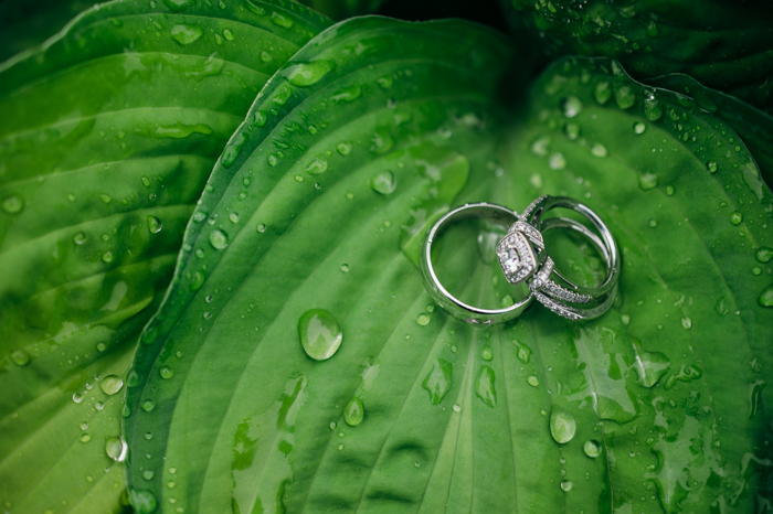 wedding rings resting on a rain covered leaf