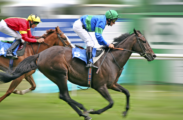 sharp photo of riders at a horse race
