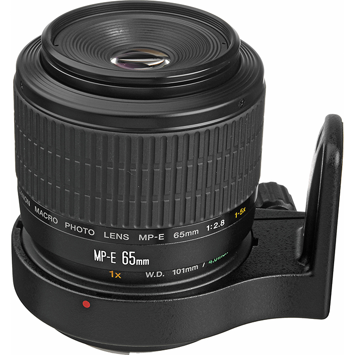 Image of a Canon EF MP-E 65mm f/2.8 1-5x Macro lens
