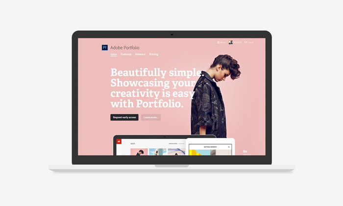 Illustrative picture of the adobe portfolio interface