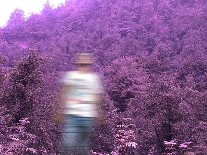 Motion blur photo of a man in front of purple trees